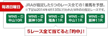 WIN5説明用画像