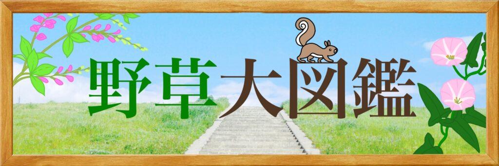 野草大図鑑の画像