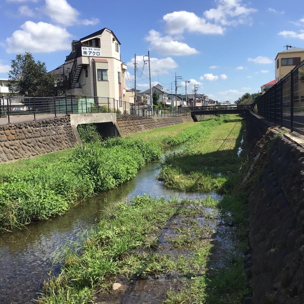 落合川の画像
